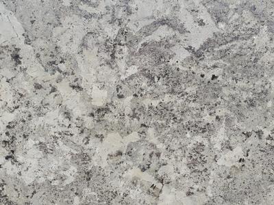 Image Alaska White